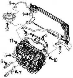 circuit de refroidissement vectra b 1 7 diesel moteur isuzu x17td alpazo pi ces d tach es. Black Bedroom Furniture Sets. Home Design Ideas